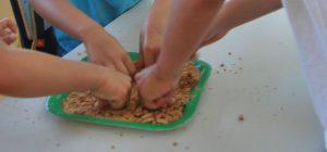 z cooking 1 62144 300x140 - Campamentos VERANO 2020